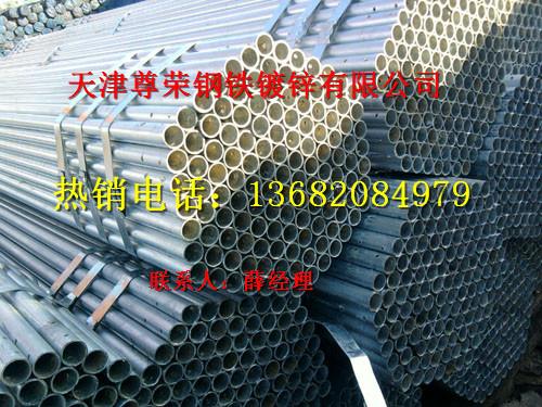 14日天津热镀锌圆管价格行情表